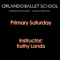 Primary Saturday - Kathy Landa